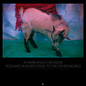 Play & Download You Have Already Gone to the Other World by A Hawk and a Hacksaw | Napster