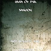 Not a Riot- the Mixtape by Year of the Dragon
