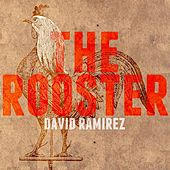 The Rooster - EP by David Ramirez