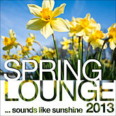 Spring Lounge 2013 (Sounds Like Sunshine) by Various Artists
