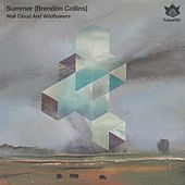 Play & Download Wall Cloud & Wildflowers - Single by Summer | Napster