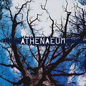 Play & Download Athenaeum by Athenaeum | Napster