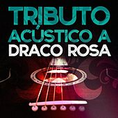 Tributo Acustico a Draco Rosa by Acoustic Soul