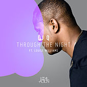Through The Night (feat. Louise Williams) - Single by DJ Q