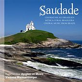 Play & Download Saudade by Apollini et Musis | Napster