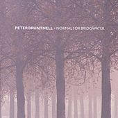 Play & Download Normal For Bridgewater by Peter Bruntnell | Napster