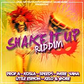 Shake it up by Various Artists
