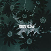 Super Black by Northern Lite