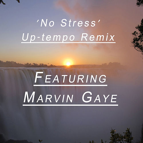 Play & Download No Stress (Remix Feat. Marvin Gaye) by Paul Hardcastle | Napster