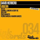 Play & Download Vibern (Gabriel Cubero, Eddy Dc, Dick Ray, Paco Maroto, Pedro Garcia, Ramon Garces) by David Herrero | Napster