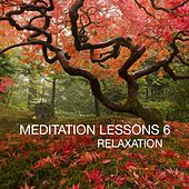 Meditation Lesson, Vol. 6 (Relaxation) by Various Artists