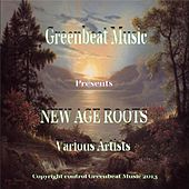 New Age Roots by Various Artists
