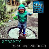 Spring Puddles by Atramix