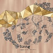 Play & Download Comments Of The Inner Chorus by Tunng | Napster