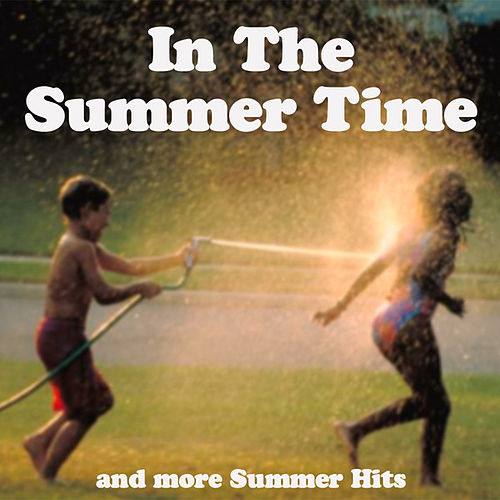 In The Summertime & More Summer Hits by Various Artists