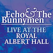 Play & Download Live At The Royal Albert Hall by Echo and the Bunnymen | Napster
