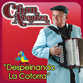 Play & Download Despeinando la Cotorra by Chon Arauza Y La Furia Colombiana | Napster