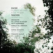 Fauré: Pelléas et Mélisande - Élégie - Mélodies - Wagner: Siegfried-Idyll by Various Artists