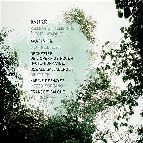 Play & Download Fauré: Pelléas et Mélisande - Élégie - Mélodies - Wagner: Siegfried-Idyll by Various Artists | Napster