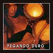 Play & Download Pegando Duro by Various Artists | Napster
