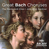 Play & Download Great Bach Choruses by Various Artists | Napster