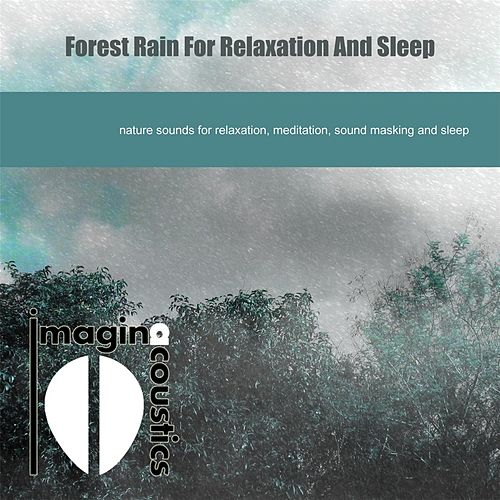 Play & Download Forest Rain for Relaxation and Sleep by Imaginacoustics | Napster