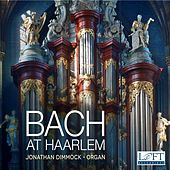 Bach at Haarlem by Jonathan Dimmock