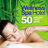 Wellness Spa Hotel (50 Selected Music Gems for Massage, Relaxation and Serenity) by Relaxing Mood
