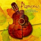Flamenco Patrimonio De La Humanidad de Various Artists