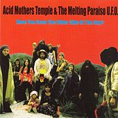 Have You Seen The Other Side OF The Sky? by Acid Mothers Temple