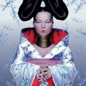 Homogenic von Björk