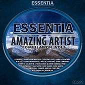 Amazing Artist Compilation, Vol. 1 by Various Artists
