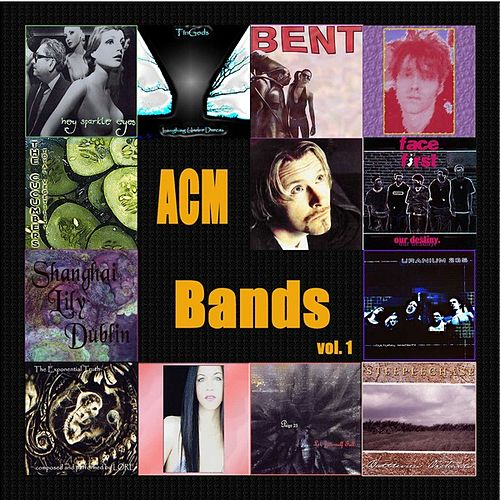 Bands Vol. 1: Various Artists by Various Artists