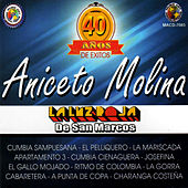Play & Download 40 Anos de Exitos by Aniceto Molina | Napster