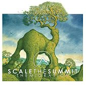 Play & Download The Migration by Scale the Summit | Napster