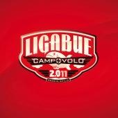 Campovolo 2.011 by Ligabue