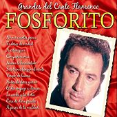Play & Download Grandes del Cante Flamenco : Fosforito by Fosforito | Napster
