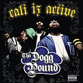 Play & Download Cali Iz Active by Tha Dogg Pound | Napster