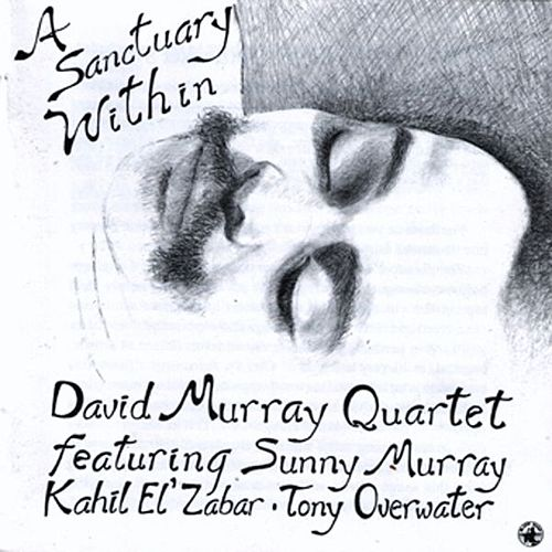 Play & Download A Sanctuary Within by David Murray | Napster