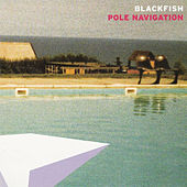 Play & Download Pole Navigation by Blackfish | Napster