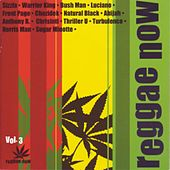 Play & Download Reggae Now Vol. 3 by Various Artists | Napster