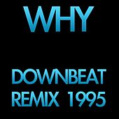 Play & Download Why (Downbeat Remix 1995) by Disco Fever | Napster