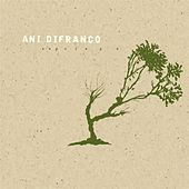 Play & Download Reprieve by Ani DiFranco | Napster