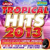 Tropical Hits 2013 by Various Artists