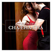 Play & Download 20 Éxitos del Cha-Cha-Chá by Various Artists | Napster