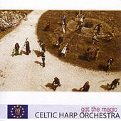 Got The Magic by Celtic Harp Orchestra
