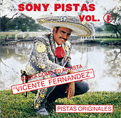 Play & Download Sony-Pistas Vol.1 (Vic. Fernandez) by Vicente Fernández | Napster