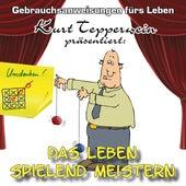 Das Leben spielend Meistern - Gebrauchsanweisungen fürs Leben by Kurt Tepperwein