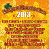 Play & Download Seljordfestivalen 2013 by Various Artists | Napster