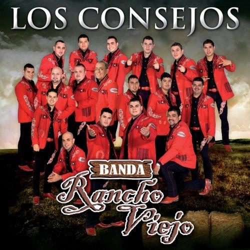 Los Consejos by Banda Rancho Viejo